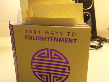 1001 WAYS TO ENLIGHTENMENT