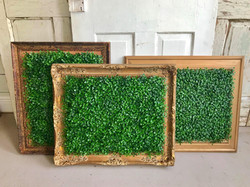Gold frames with greenery