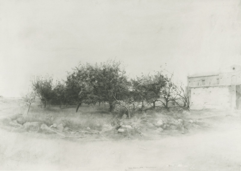 María Moreno, Quince trees in Río Záncara, 1974