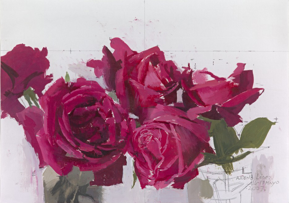 Rosas rojas, 2007