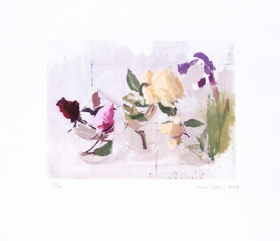 Rosas de Año Nuevo, 2017, grabado sobre 5 planchas de fotopolímero y se ha estampado en treinta y cuatro colores sobre papel Hahnemühle; Tirada de 76 ejemplares. Huella: 28,5 x 38 cm; Papel: 51 x 56,5 cm.