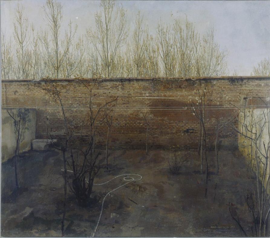 El jardín de atrás, 1969