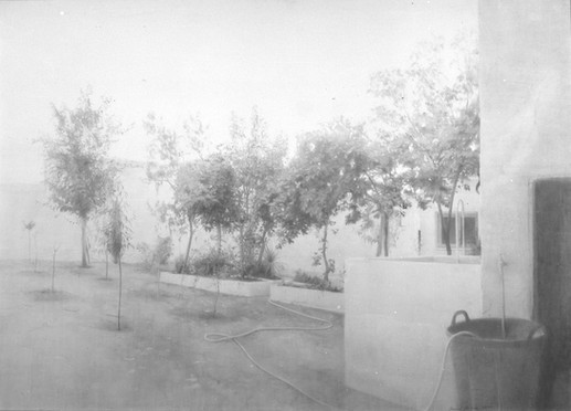 María Moreno, Fruit trees in Tomelloso, 1975