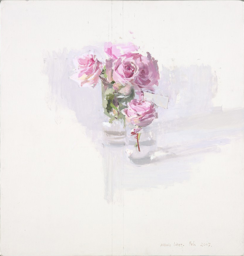 Rosas rosas, 2007