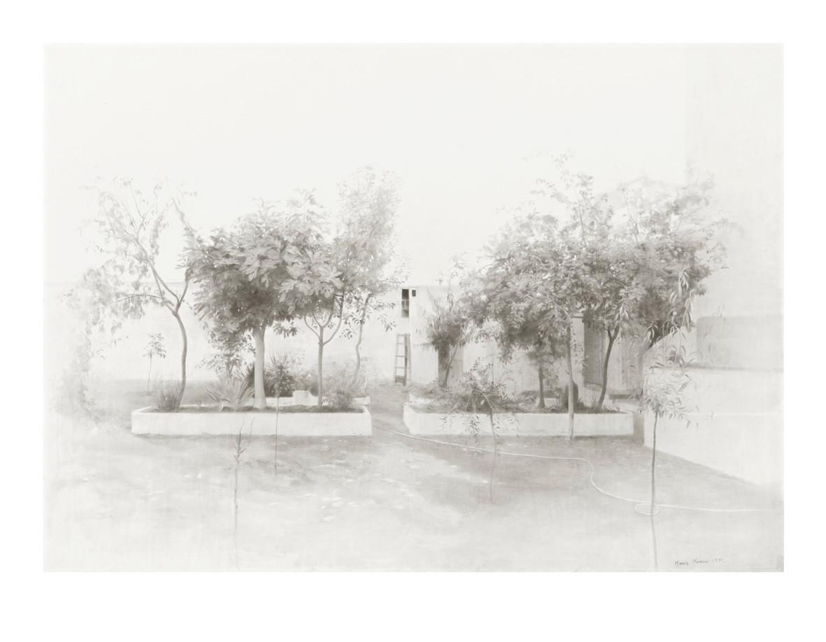 Tomelloso Garden, 2020, digigraph, 61 x 78,5 cm