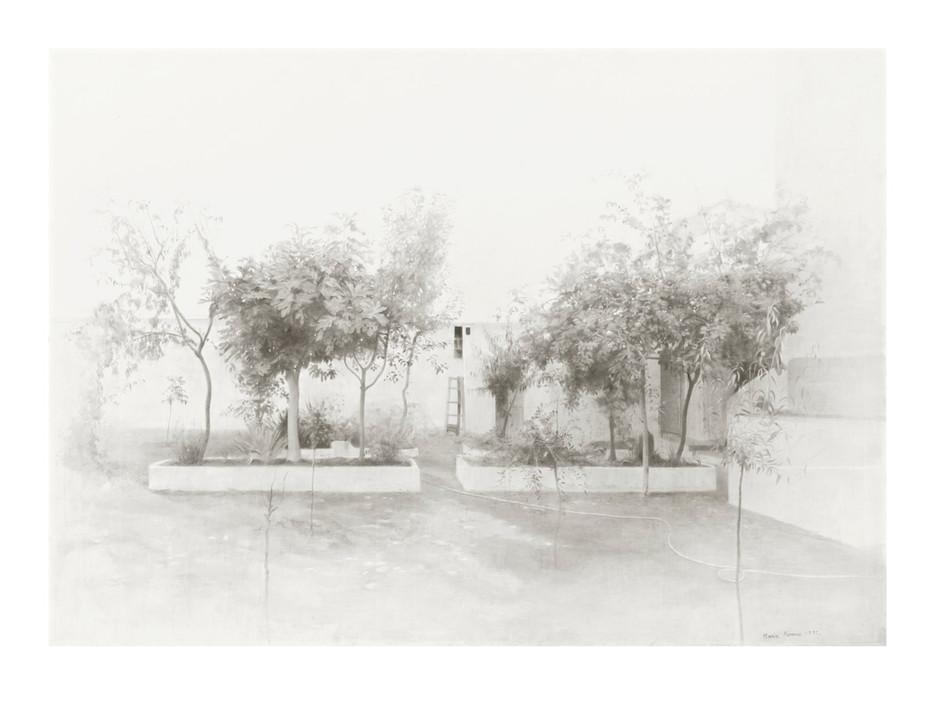 Jardín de Tomelloso, 2020, digigrafía, 61 x 78,5 cm