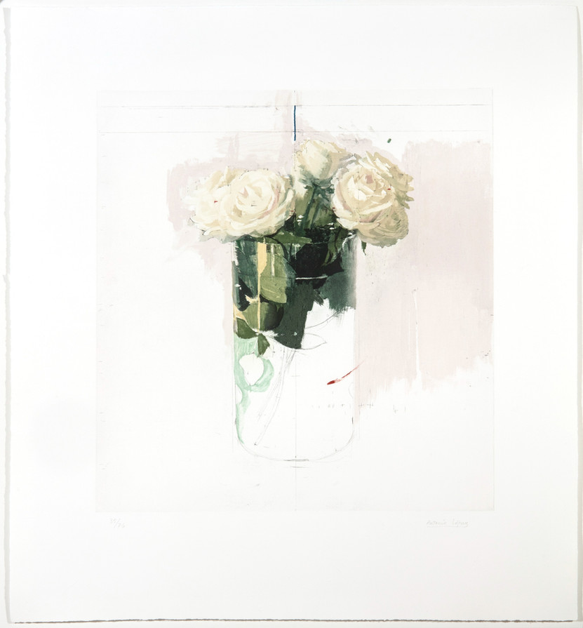 Roses of Ávila, 2018, Engraving on 4 photopolymer plates on Hahnemühle paper. Edition of 76 copies. Plate mark: 54 x 50.5 cm, Paper: 78.8 X 72 cm
