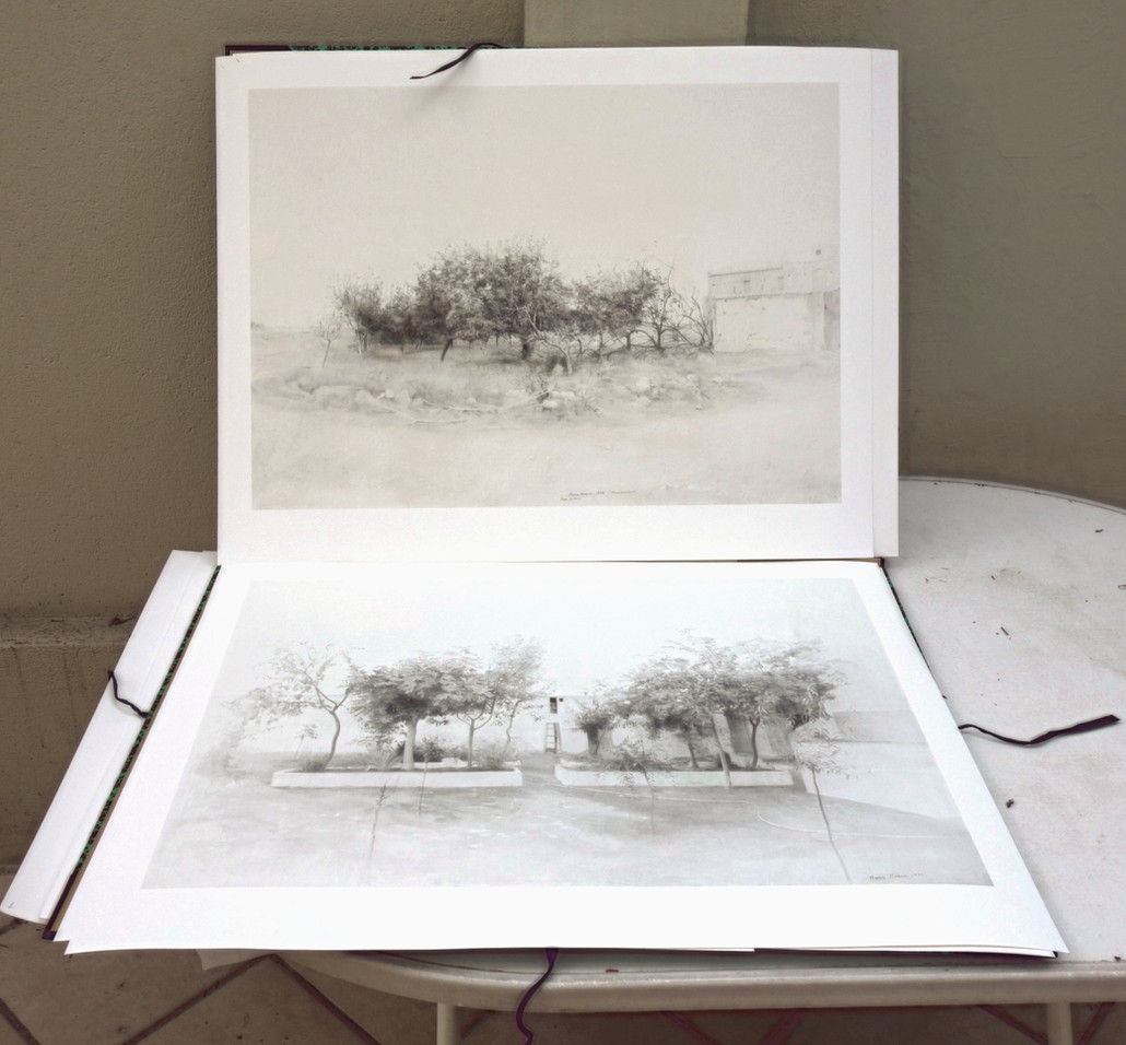 """Proofs of the  Digital printings; """"Quince trees in Río Záncara"""" and """"Tomelloso Garden"""""""