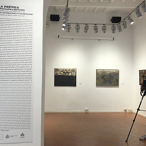 La poética entre abstracción y figuración. Instituto Cervantes de Roma