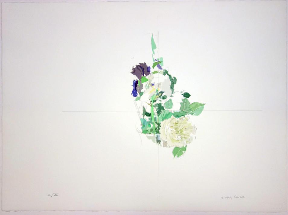 Lirios y Rosa Blanca, 1991, serigrafía de 78 colores, papel Arches Aquarelle 300 gr. Tirada de 100. Huella: 56,5 x 76,5 cm.