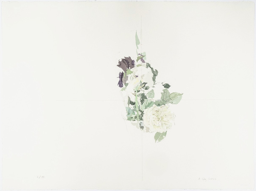 Lily and White Rose, 1991, silkscreen, Arches Aquarelle Paper 300 gr. Edition of 100 copies. Plate mark: 56.5 x 76.5 cm