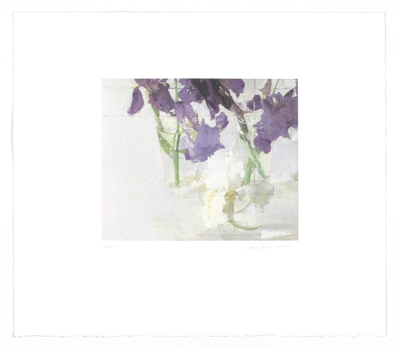 Lilies, 2021, Etching, Lithograph, 300 gram BFK Rives paper. Edition of 75 copies. Plate mark: 29.5 x 36 cm, Paper: 59.5 x 78 cm.