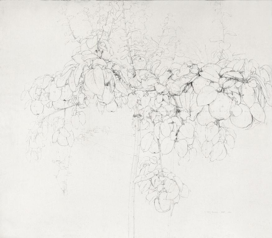 Antonio Lopez, Árbol de membrillo, 1990