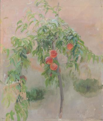 María Moreno, Peach Tree, 1990