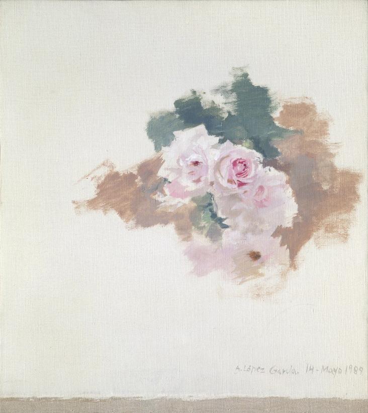 Rosas rosas, 1989