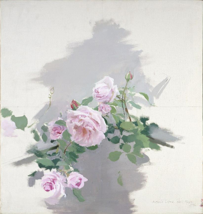 Rosas, 1996