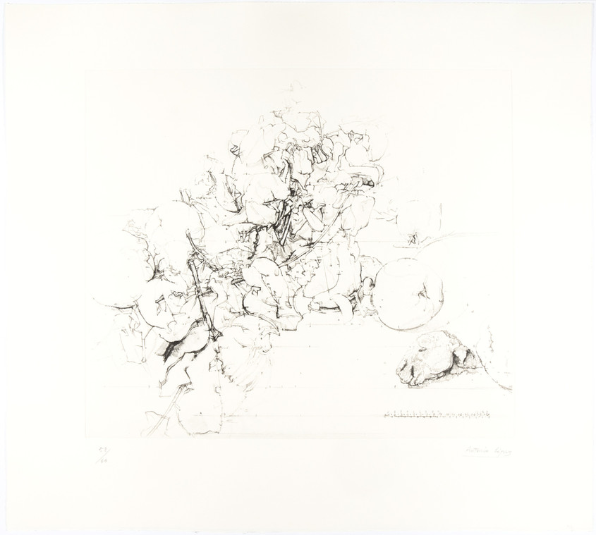 Quinces, Pomegranates and Rabbit Head, 2011, Etching, aquatint and soft varnish on copper plate, Gravar Art Paper 320 gr. Edition of 60 copies. Plate mark: 45.5 x 52.5 cm, Paper: 65 x 72.5 cm