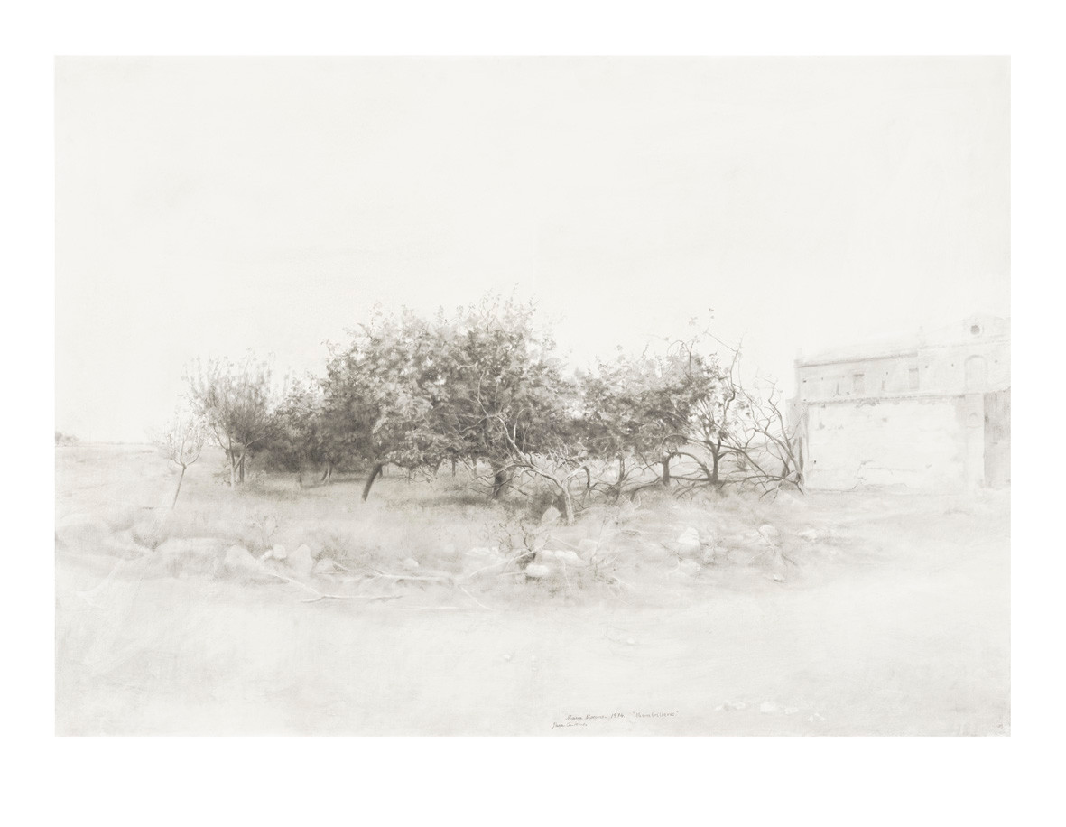 Quince Trees in Záncara River, 2020, digigraph, 61 x 78,5 cm