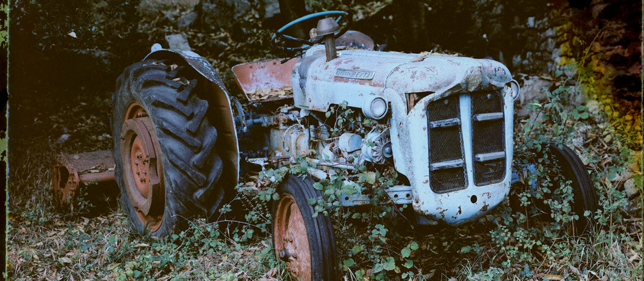 A beatiful old tractor