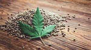 The Rise of Hemp - Can New Apps keep Up With The Expanding need for CBD & Hemp products.