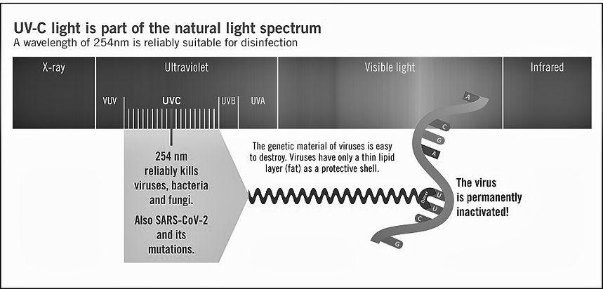 UVC Disinefection Spectrum.jpg