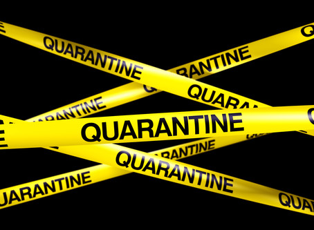 Are you Quarantined in a Moldy House?