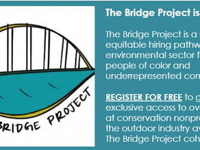 Job Opportunity: The Bridge Project is Hiring!