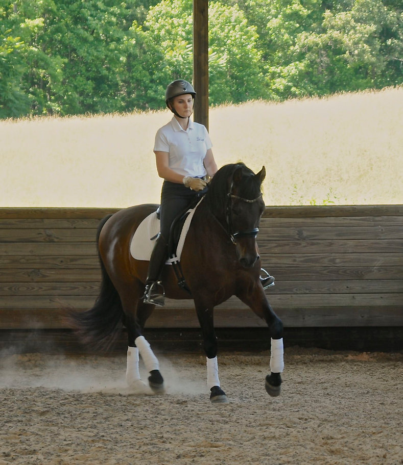 Samantha Pearson, Mint Equine LLC, Morriston, FL, Dressage Training