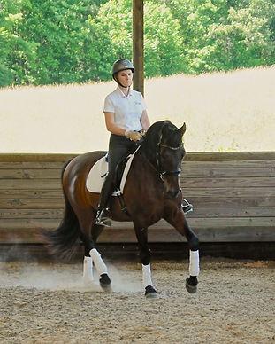 Samantha Pearson, Mint Equine LLC, Ocala, Morriston, FL, Dressage Training