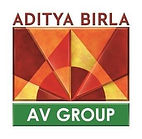 AV Group Logo_.jpg
