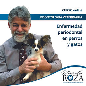 Capa_curso_Enfermedad.jpg