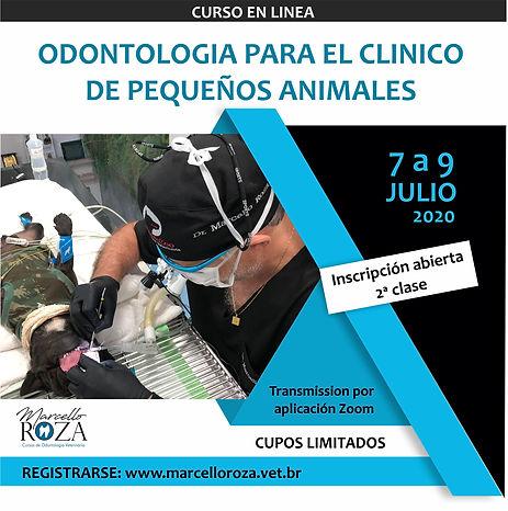 CURSO ODONTO PEQ. ANIMAIS - ESPANHOL_2 T