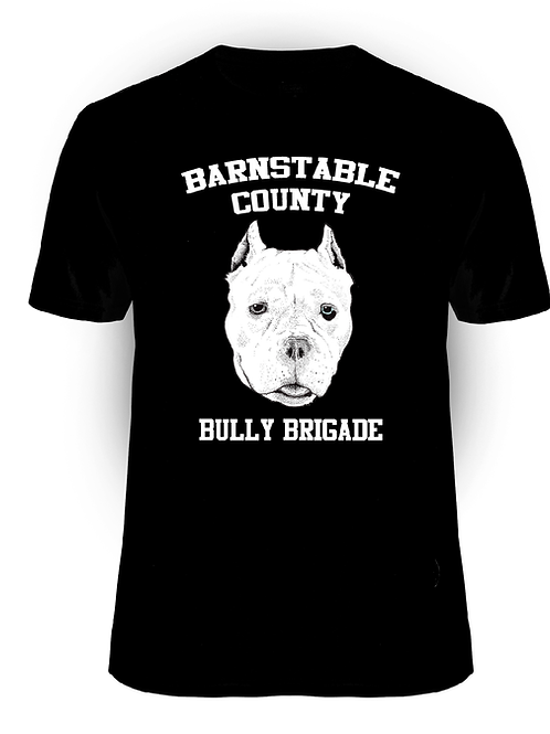 Barnstable County Bully Brigade