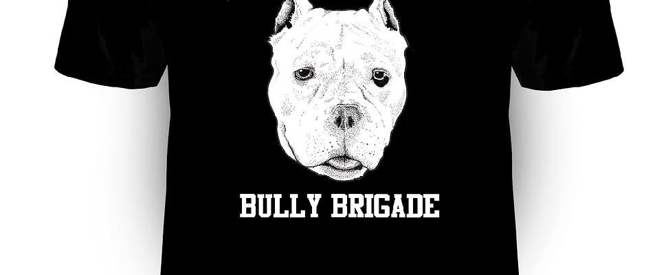 Barnstable County Bully Brigade