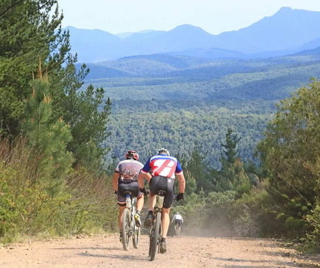 mountain-biking-01-590x390.jpg