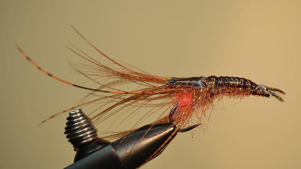 Mallard Shrimp -brown-