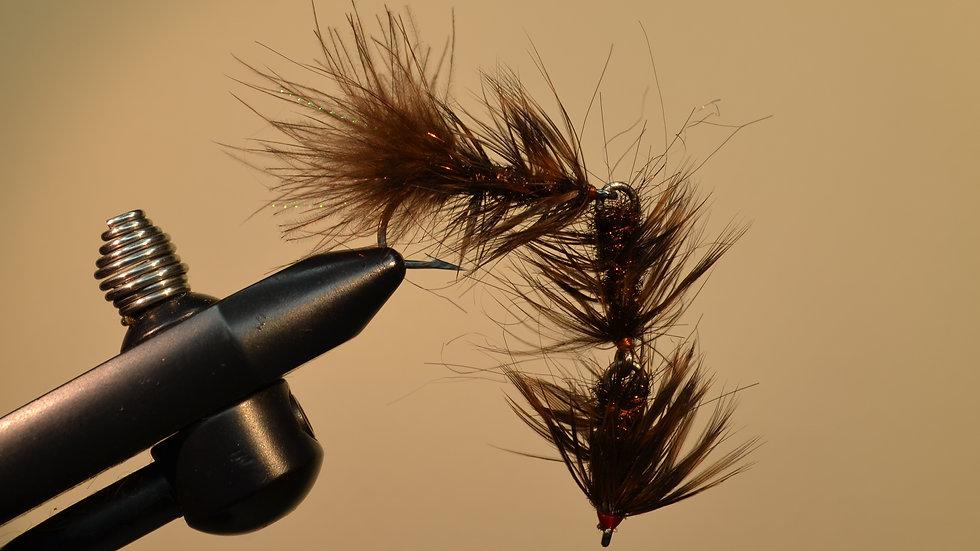 F.B.S. Borstenwurm -brown-