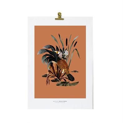 maisonbaluchon-illustration-sauvage-26-t