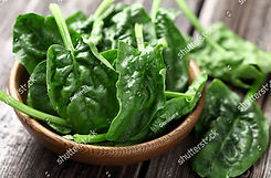 stock-photo-spinach-leaves-in-a-wooden-p