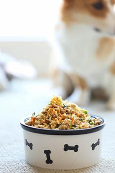 Chicken & rice.jpg