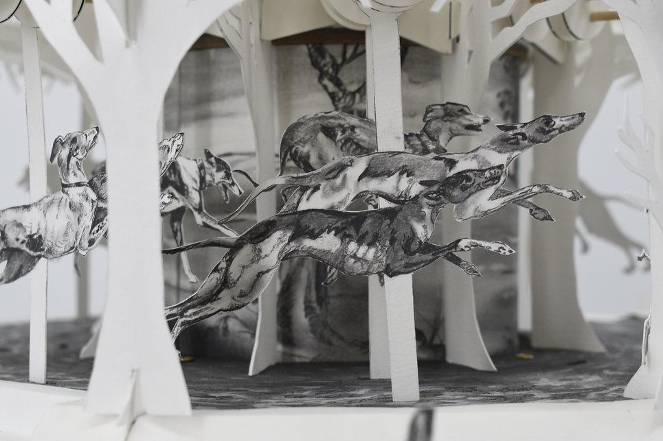 carousel 3.jpg