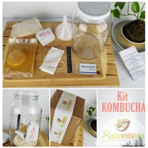 Kit kombucha