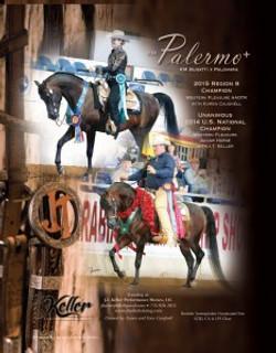 KM-Palermo-6-15-news-234x300