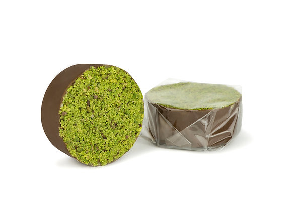 Mastic Evergreen