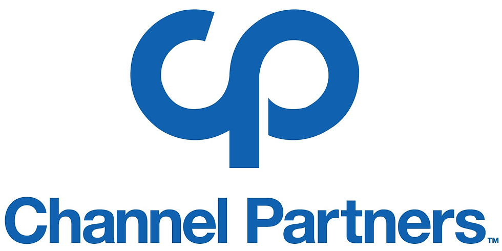 Diversity Panel at Channel Partners