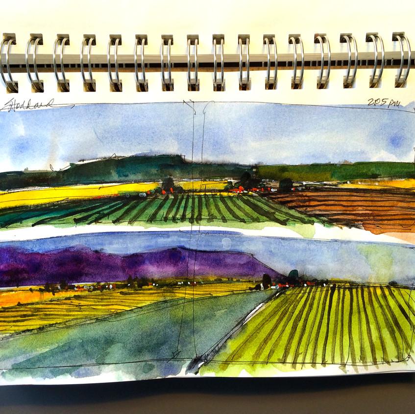 16 Farmlands from the train