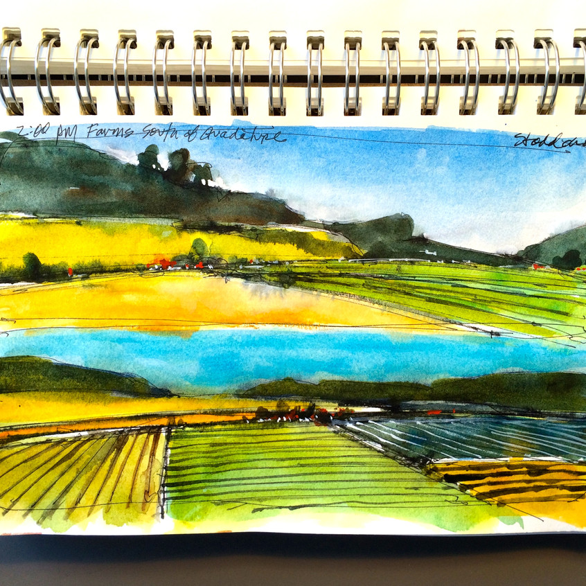 15 Farmlands from the train