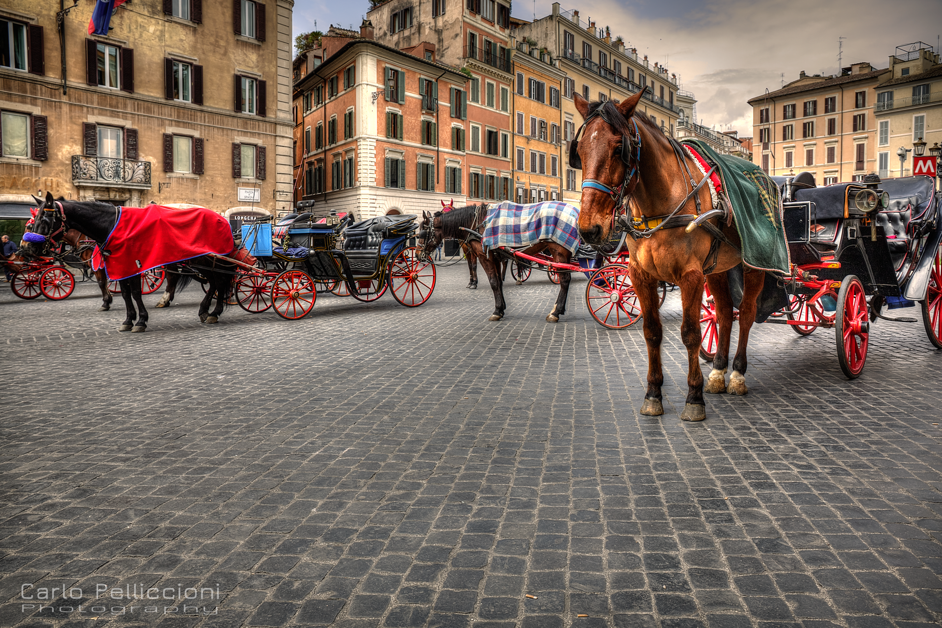 Cavalli-a-Roma-web.jpg