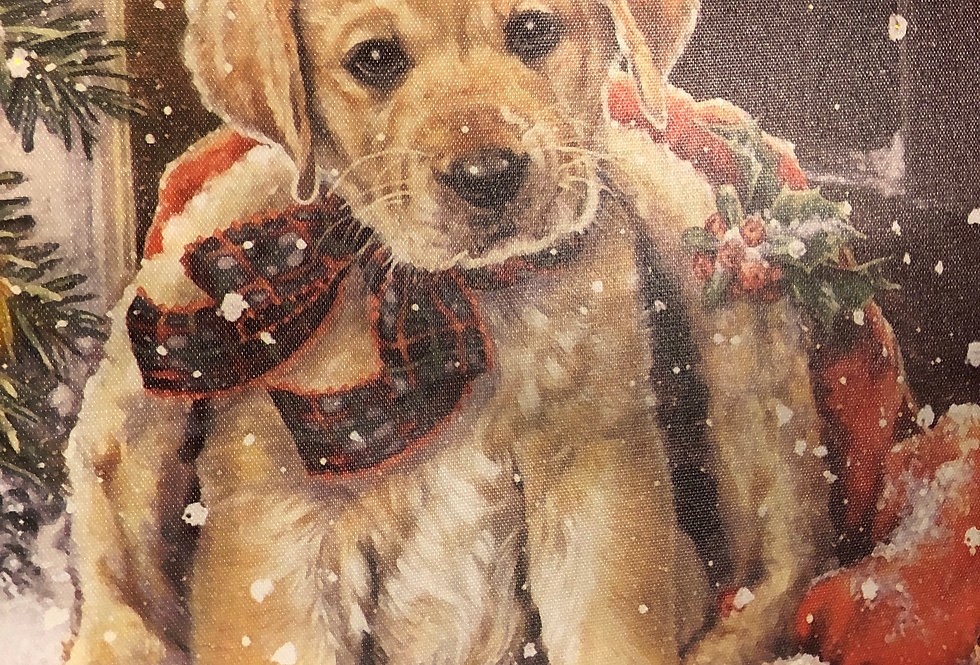 Christmas Puppy Canvas