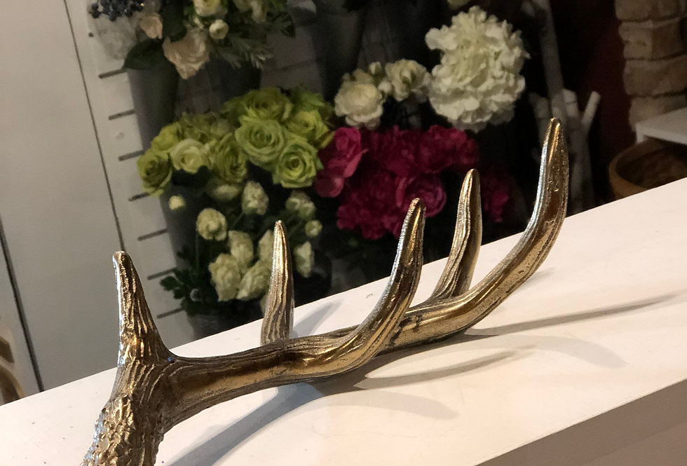 Brass Antlers